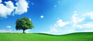 Principais desafios da transição para a ISO 14001:2015