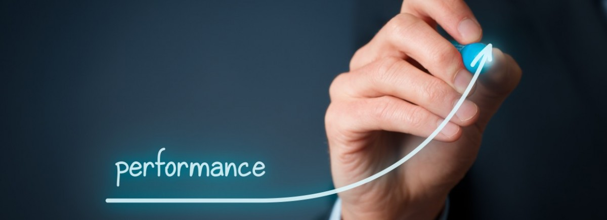 A gestão do desempenho baseada em riscos