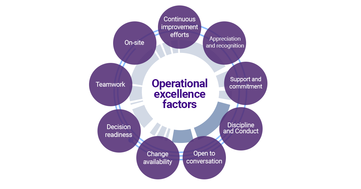 Operational Excellence Organization